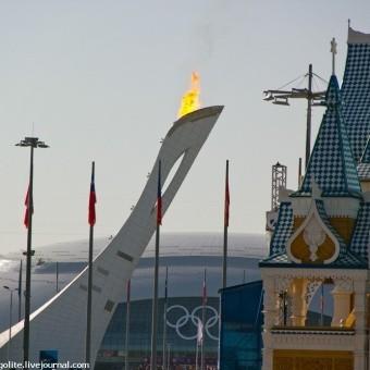 Один день в Олимпийском парке
