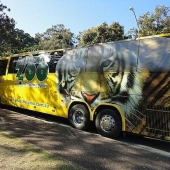 Автобусы в Австралии