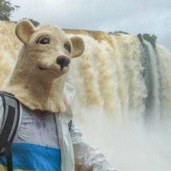 Водопады Игуасу: природное чудо света с аргентинской и бразильской стороны