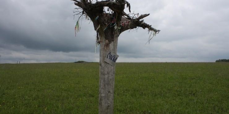 Коми-Пермяцкий округ: царство холодного зеленого цвета