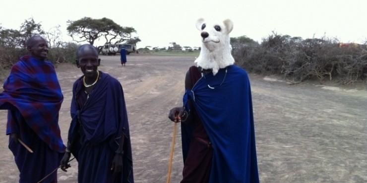 Сафари в Южной Африке - главное развлечение туристов