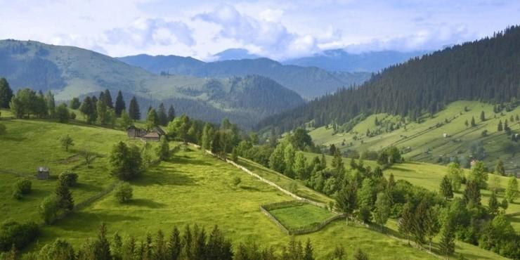 Места, которые стоит посетить в Украинских Карпатах