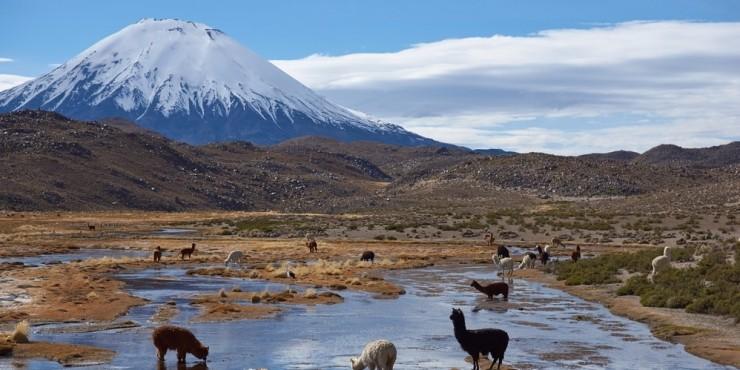 10 вещей, которые нужно сделать в Чили