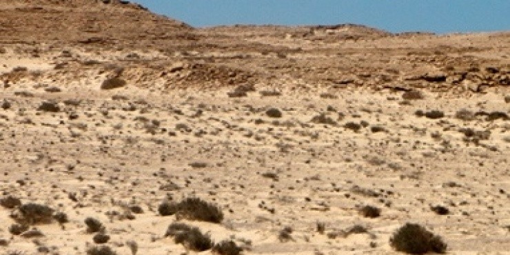 Западная Сахара.