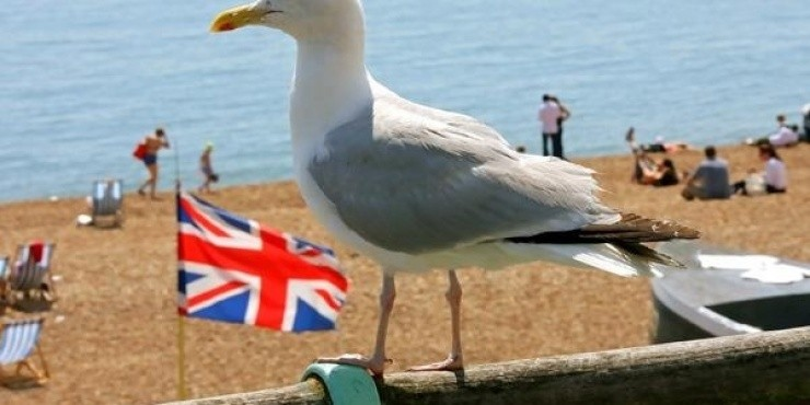 Брайтон. Великобритания