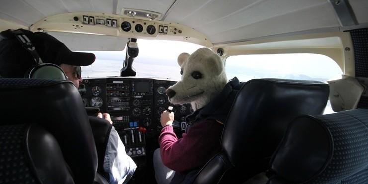 Авиадискаунтеры, лоукостеры, низкобюджетные авиакомпании