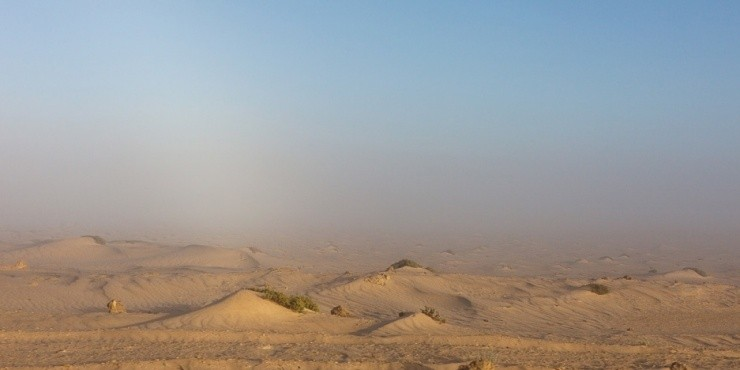 Виза в Мавританию.