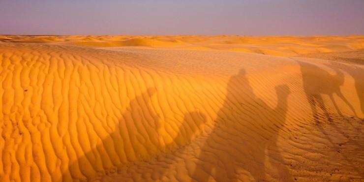 Тунис. Ворота пустыни.