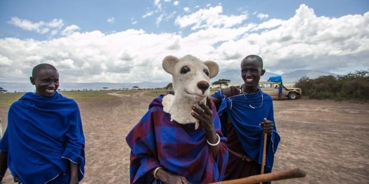 Эльнар Мансуров: Сафари в Танзании. 11.04