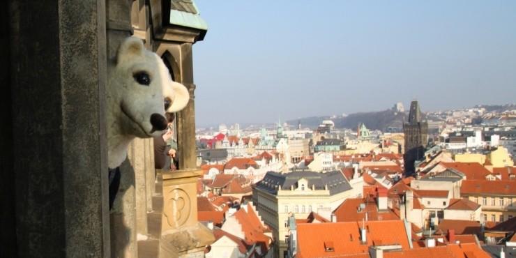 20 самых лучших недорогих отелей в Праге