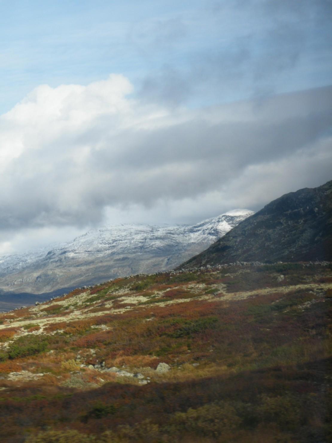 Экспериментальный отчет об автобусном туре Финляндия-Швеция-Норвегия-Дания