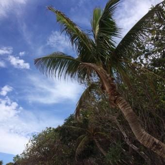 Боракай – остров веселья