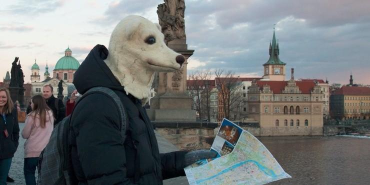 Какой путеводитель взять с собой в путешествие?