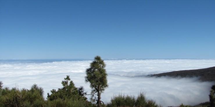 Тенерифе - остров моей мечты