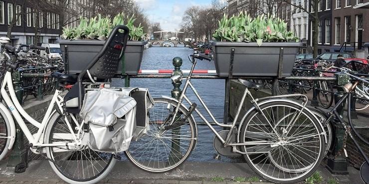 Фотопутешествие в Амстердам для любителей вкусно поесть