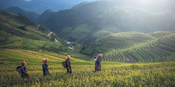 10 причин поехать на Бали